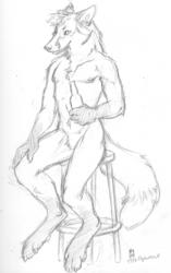 Sketchbook Dump FC'09 - Thornwolf