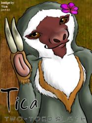 Tica badge for RMFC 2013
