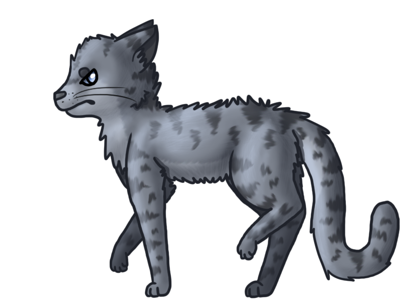 Most recent image: Jayfeather