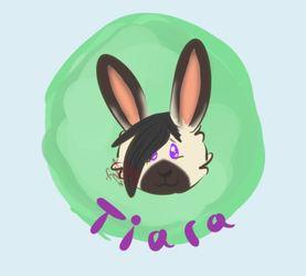 Tiara the Bunny!