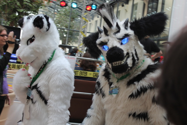 zebra smily face