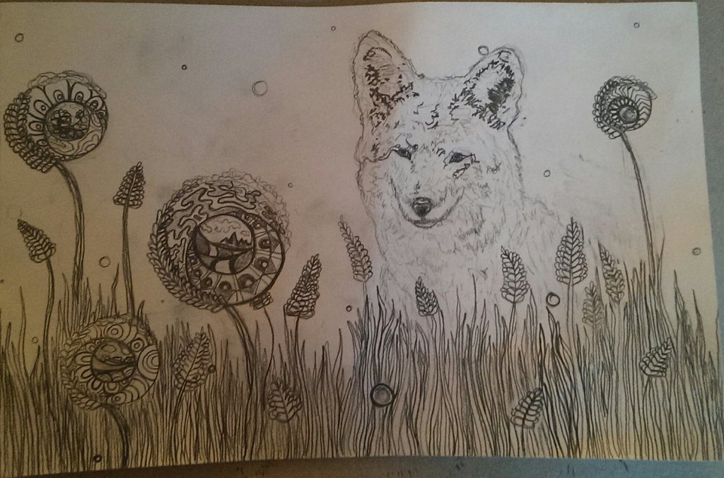 Coyote Drawing $5 Commissions here
