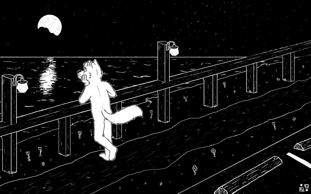 Overlooking the Night