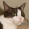 avatar of w0rmhead