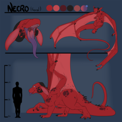 Feral Necro Character Sheet