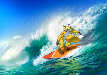 Surfing Fox :3