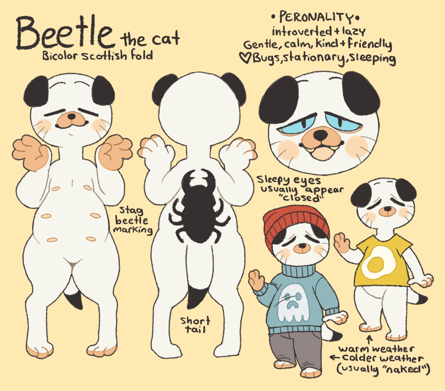Beetle Reference