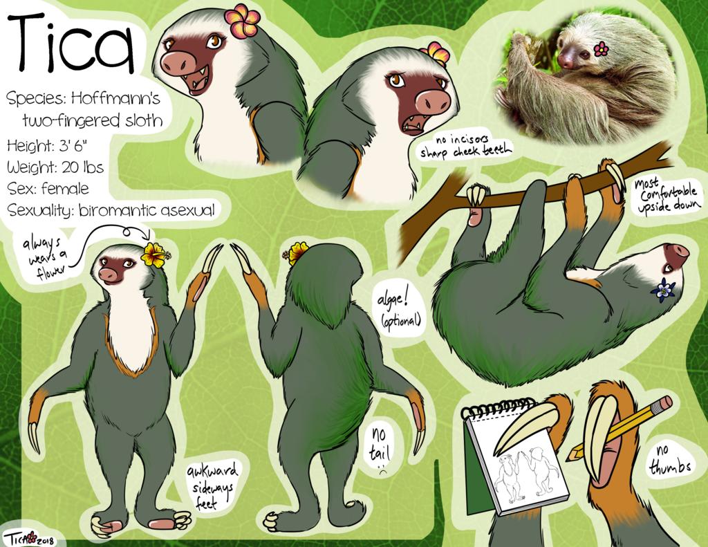 Updated Tica Ref!