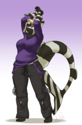 [C] Stripes and Solids