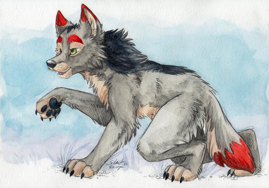 Watercolor Wolfish