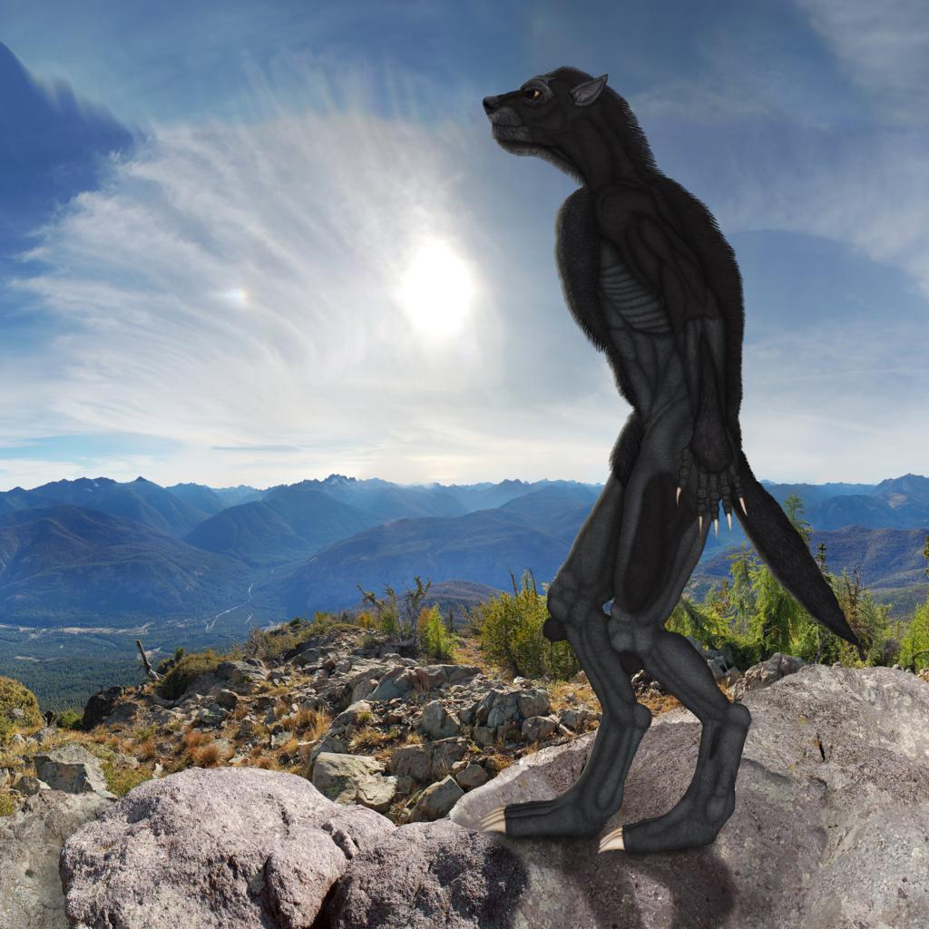Lycan standing on rocks