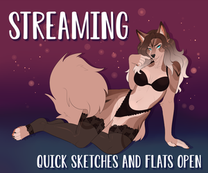 Streaming - Sketches and Flats OPEN