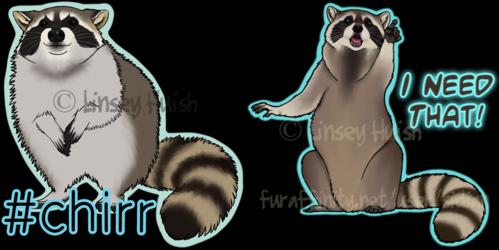 Raccoon Shirt designs
