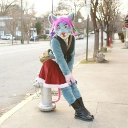 Christmas day stroll.