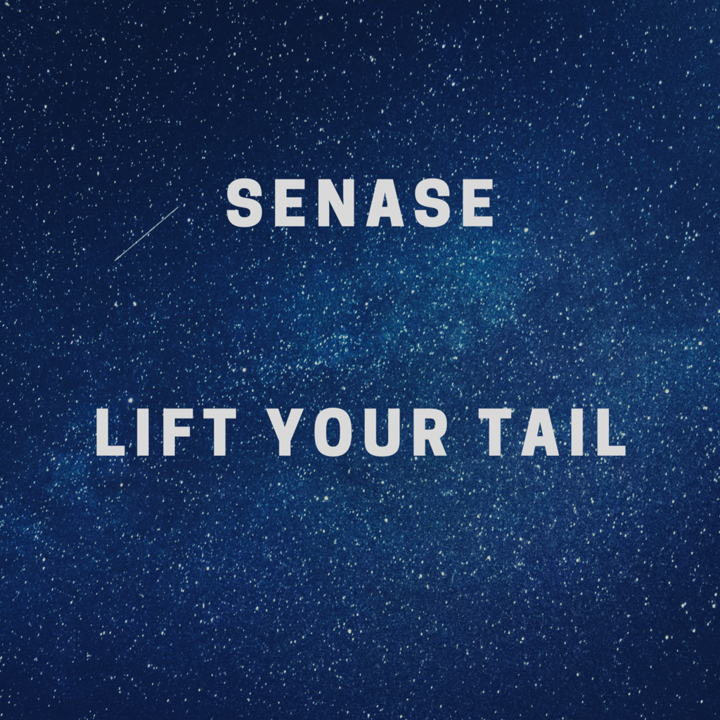Most recent image: Senase - Lift Your Tail
