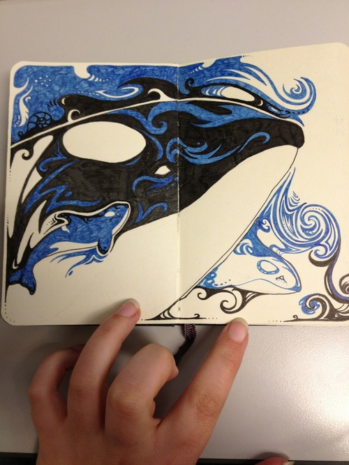 Dreaming: Orca