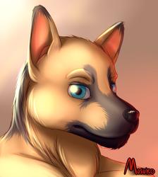 Doge (art)