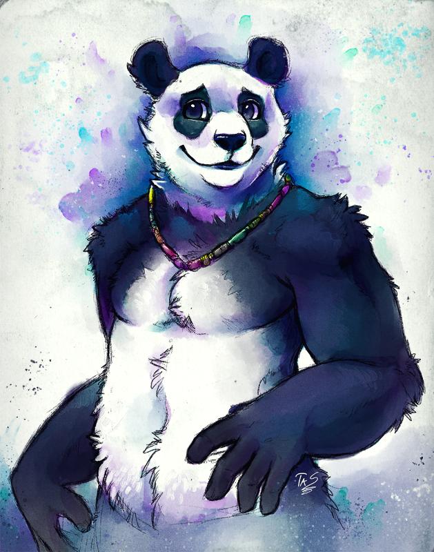 Shy Panda - Sketch