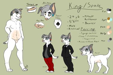 SFW King/Spade Ref Sheet