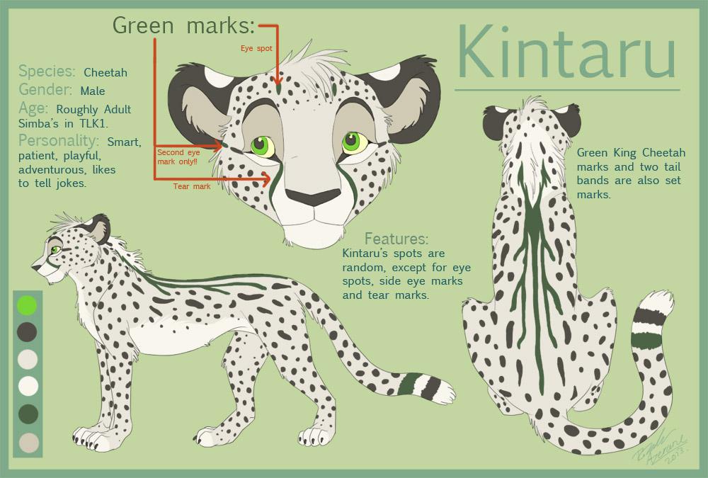 Featured image: Kintaru Reference Sheet