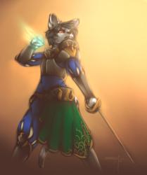 Fencer Cat