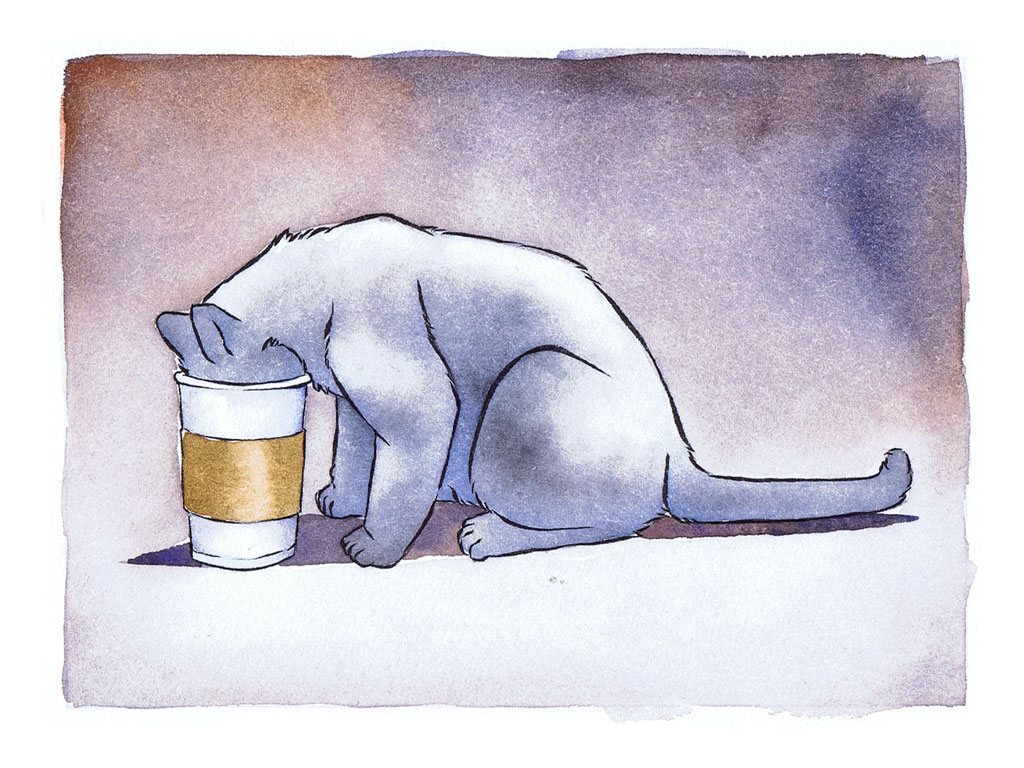 Coffee is not for cats