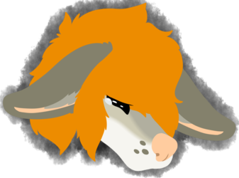 Witness Lineless Headshot