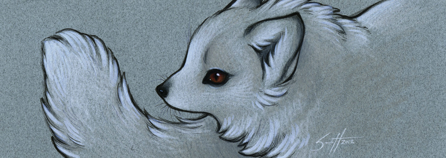 Gift - Arctic Fox
