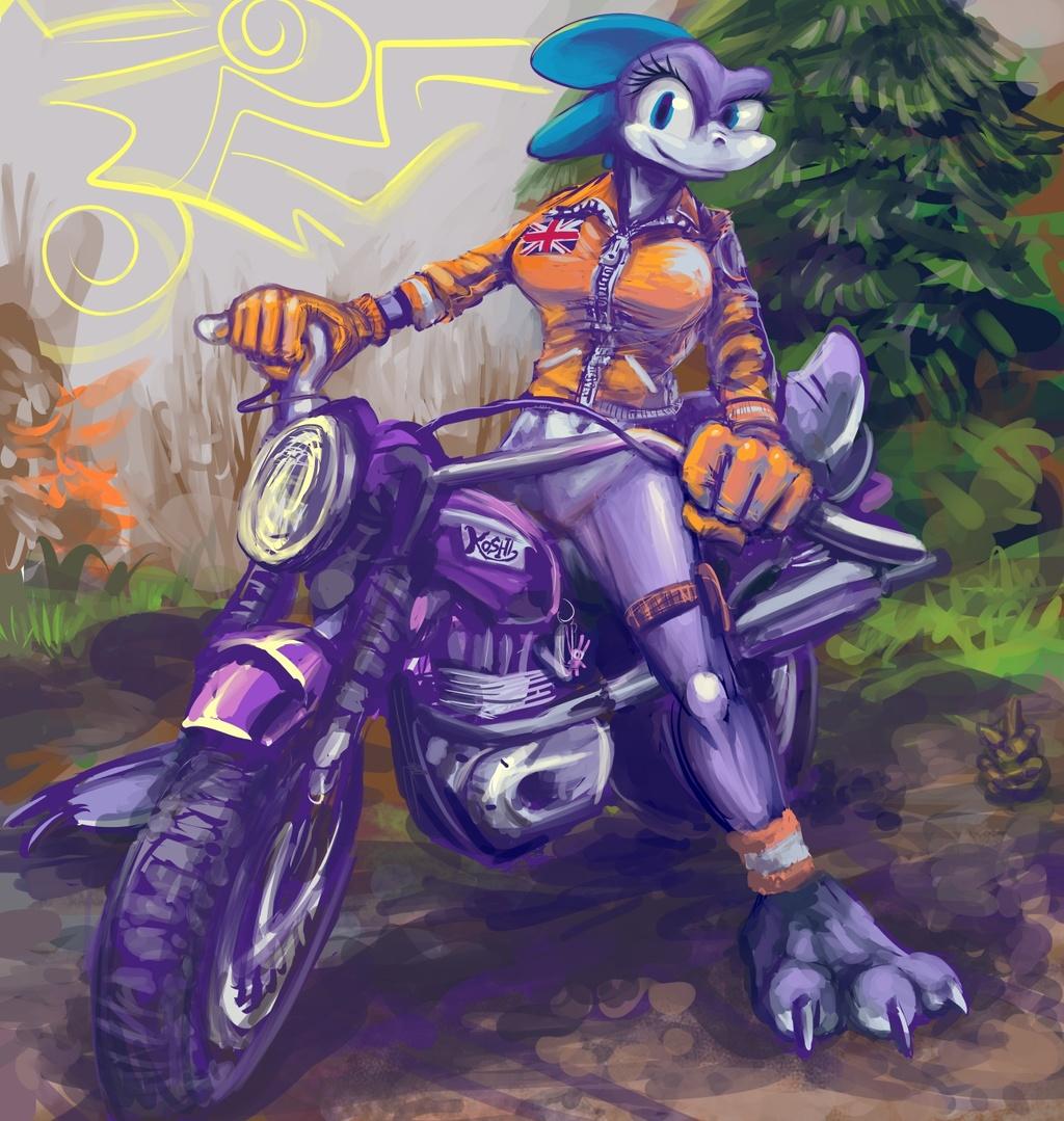 koshi rider
