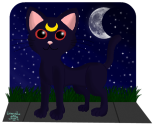 Mr. Midnight Luna