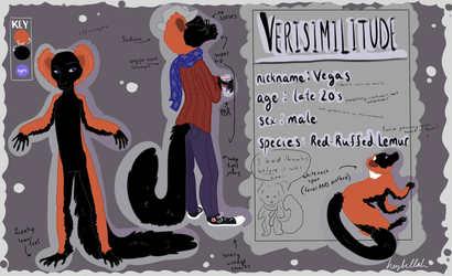 Versimilitude Reference Sheet by Hesla