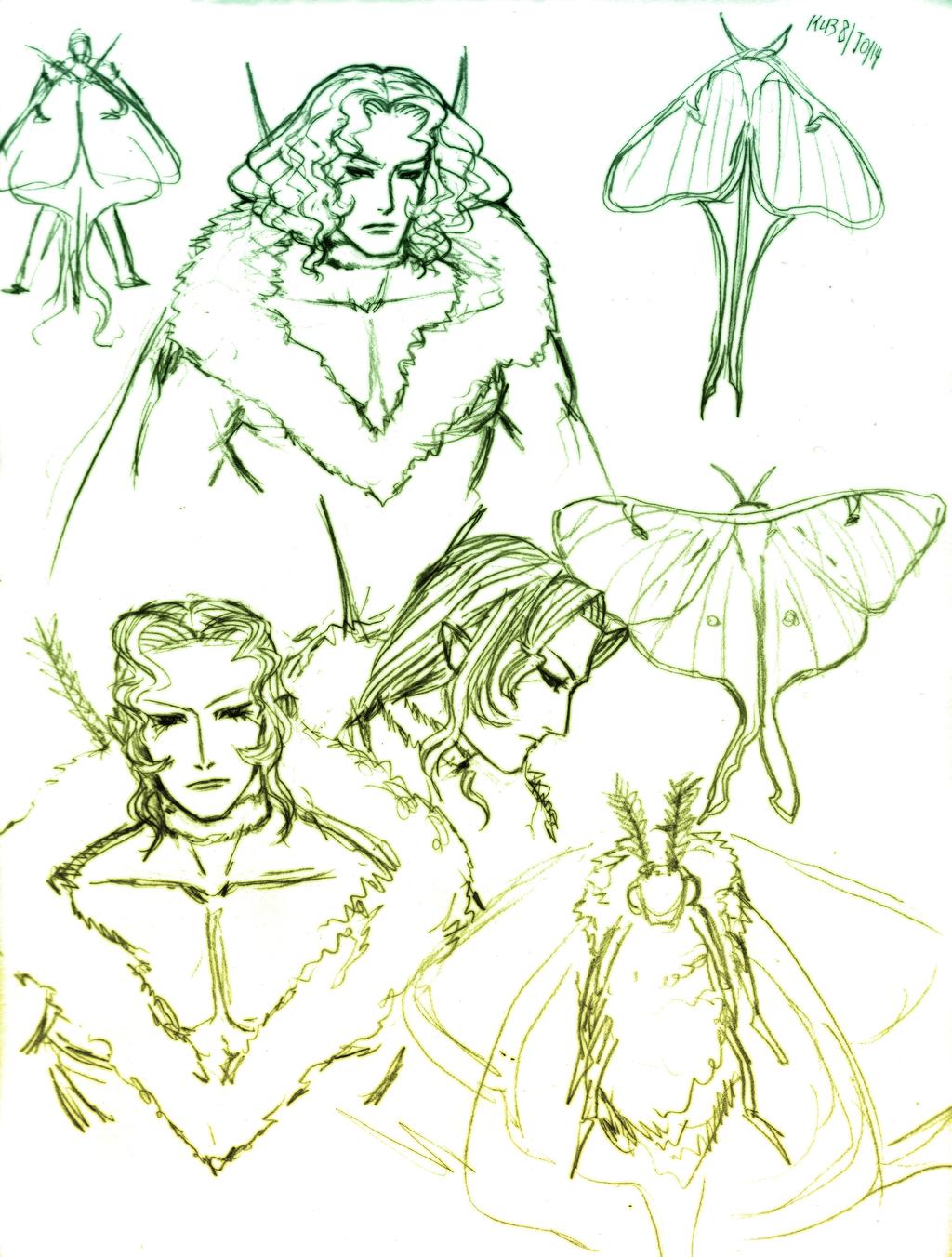 Luna Moth concepts