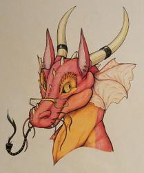 Fancy Dragon