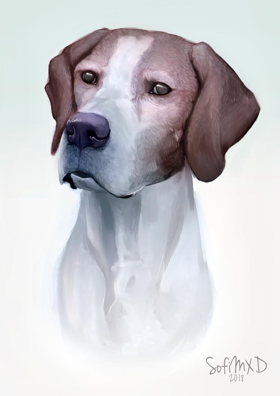 [portrait#10]Knask