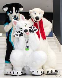 FurDU 2017: Kori Karma and Arctic Friends