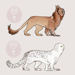 owlcat adopts!
