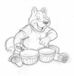 Fat husky on bongos