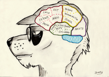 What's in my head.
