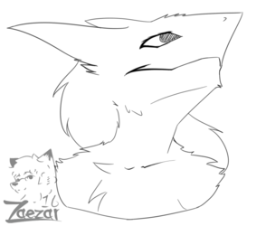 Doodle- Seregal