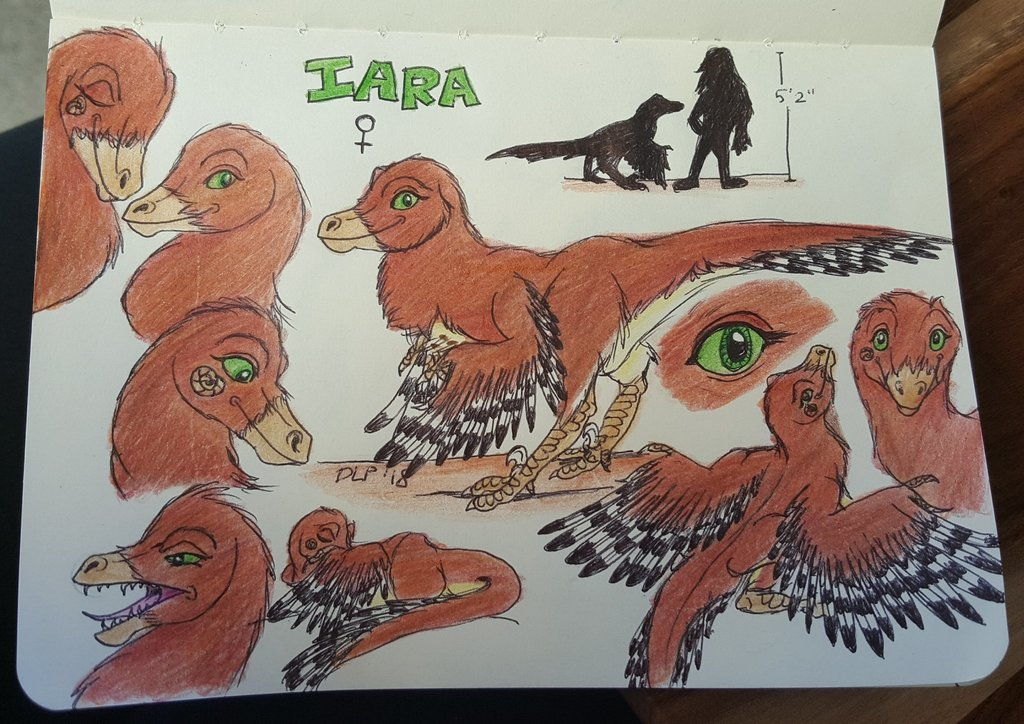 Most recent image: Iara Reference Sheet 2018