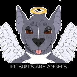 [P]Pitbulls Are Angels