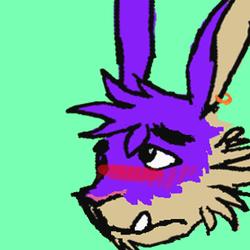 Skippy Head Icon
