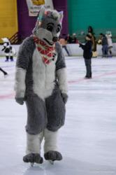 Furries On Ice: Arti 1