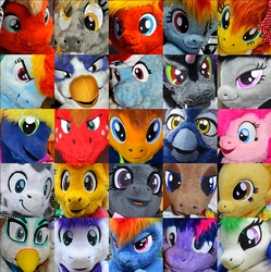 The Faces of Equestria