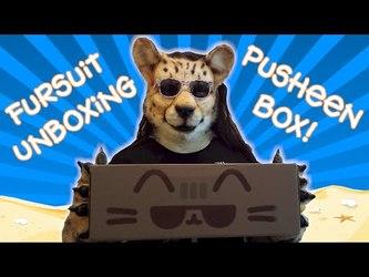 (Video) Shetani's Fursuit Unboxing: Summer 2016 Pusheen Box!