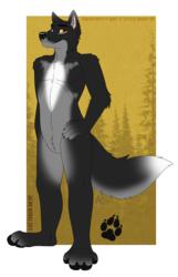 A really big and really bad wolf