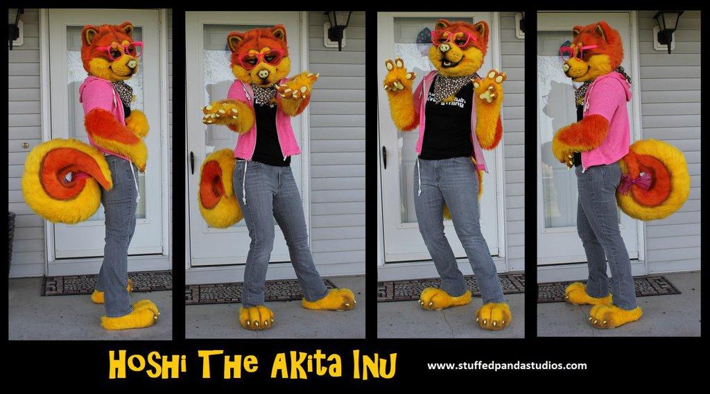 Hoshi the akita inu partial suit