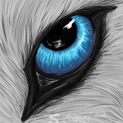Eye-Con Example