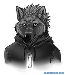 Yaru, the Wolf in the Hood [by neonpossum]