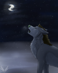 Quiet Like The Snow - Redraw and Speedpaint